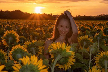 Shooting im Sonnenblumenfeld